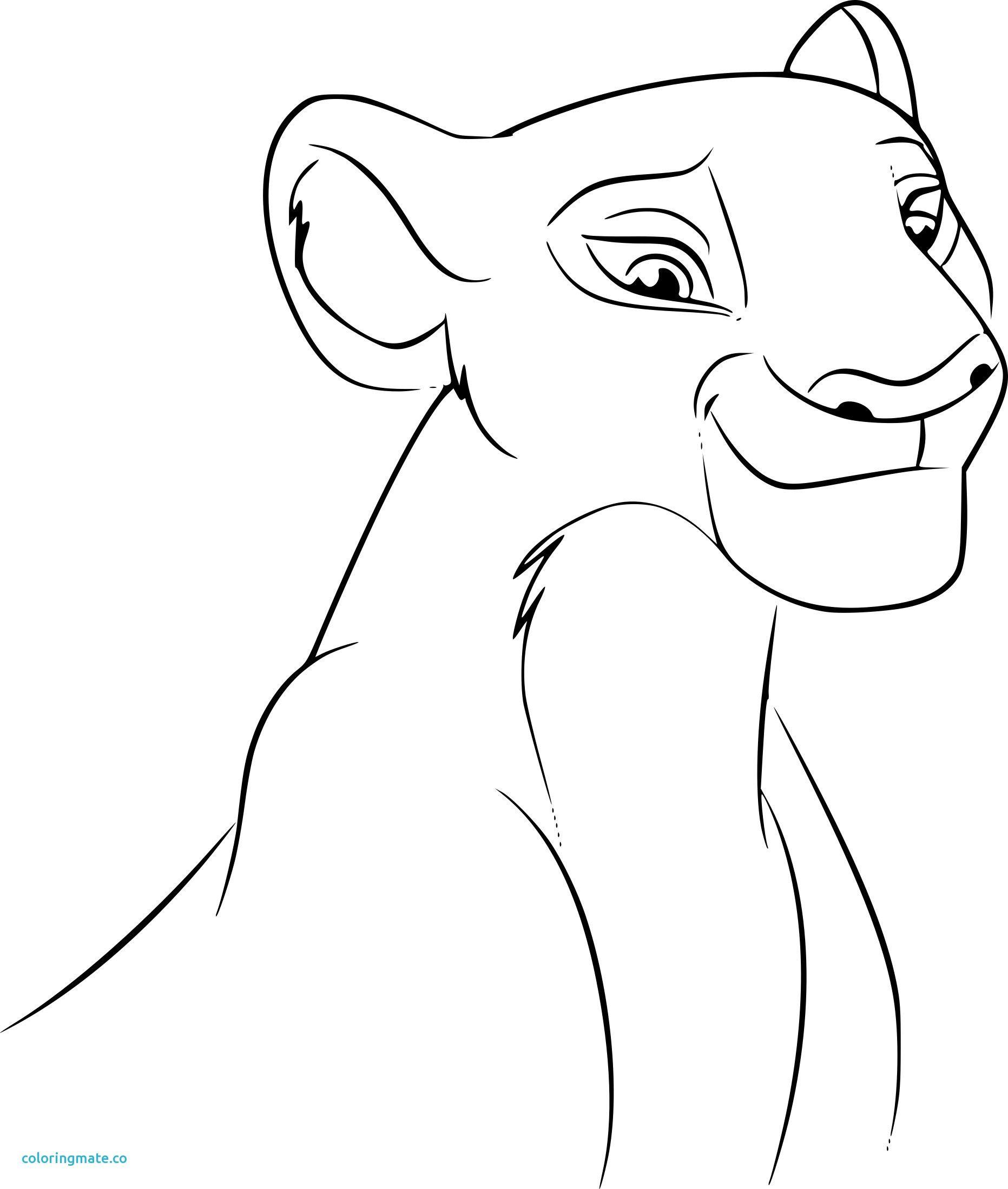 Coloriage Roi Lion Awesome Le Roi Lion Coloriage Nala Collection ...