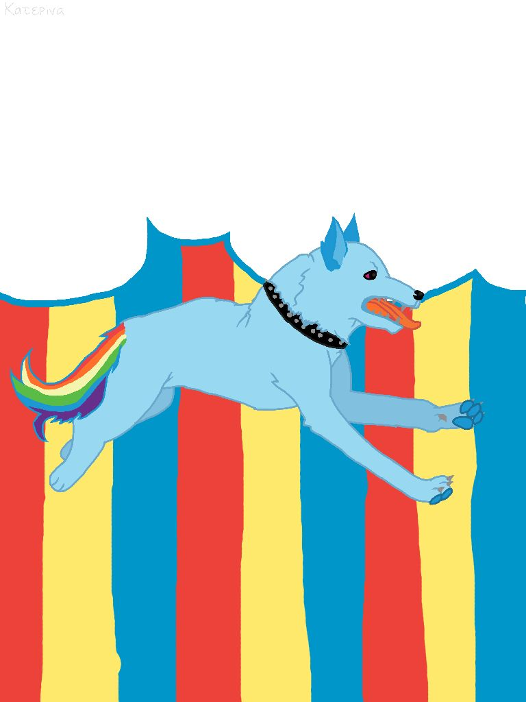 Rainbow Dash Dog Mlp Pinterest Rainbow Dash My Drawings