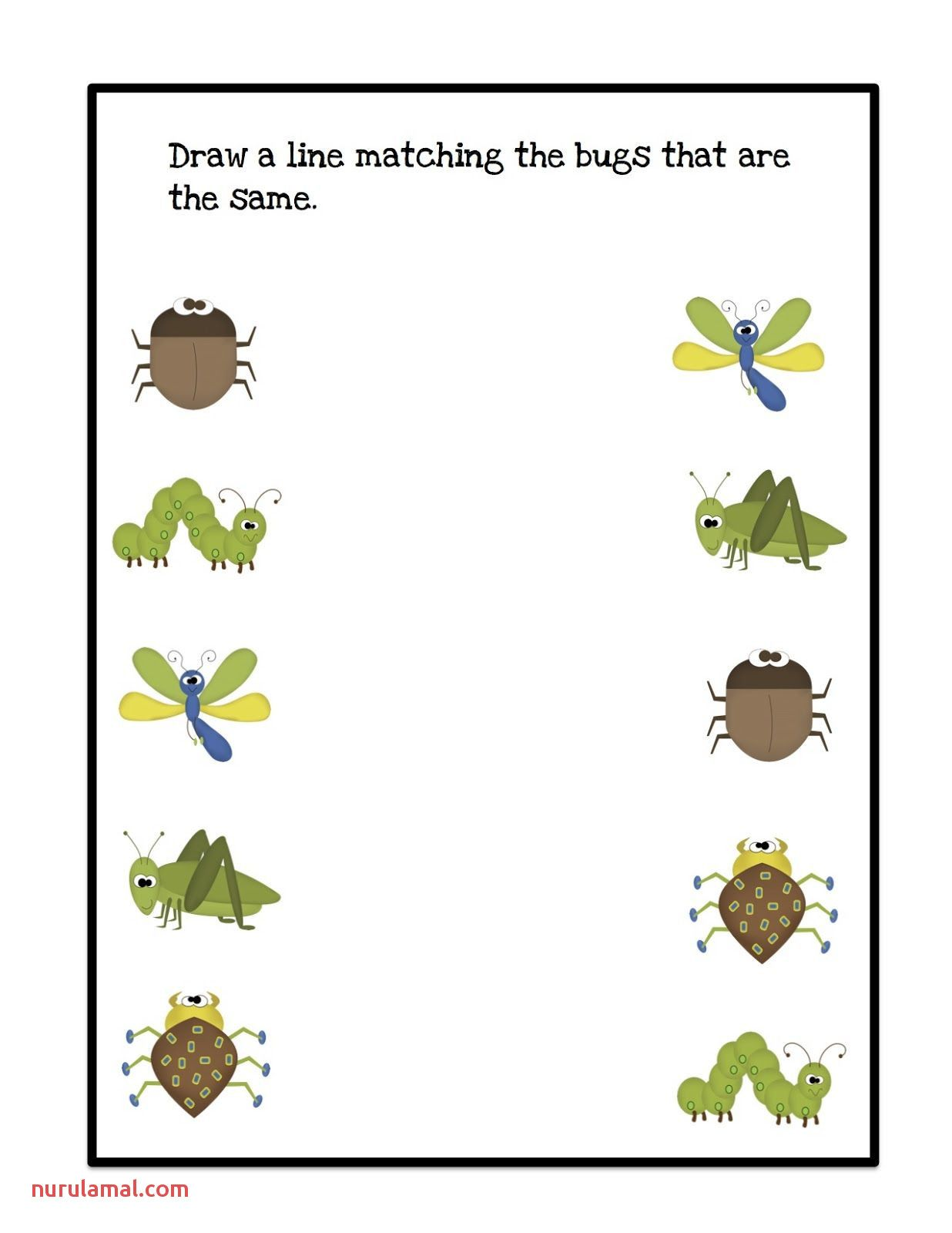 Preschool Bug And Insect Worksheets In 2020 Bugs Preschool Insects Theme Preschool Insects Preschool