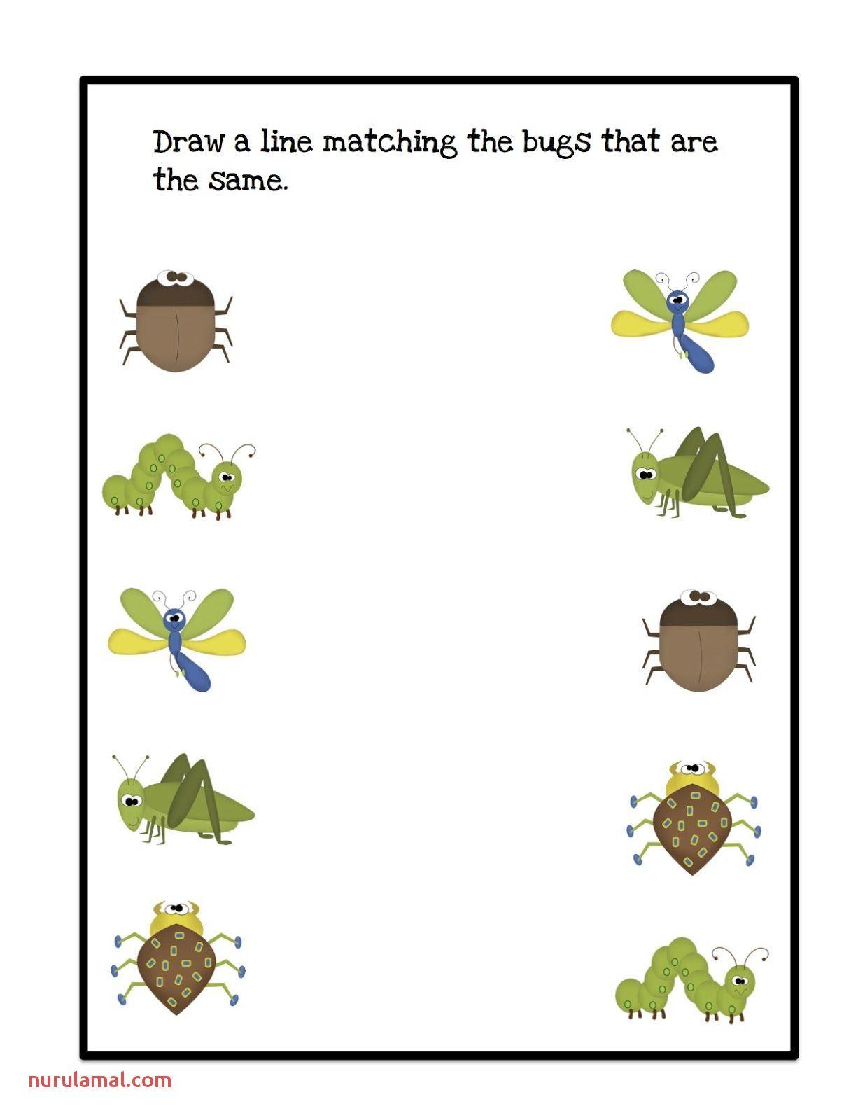 Pin On Preschool Prek