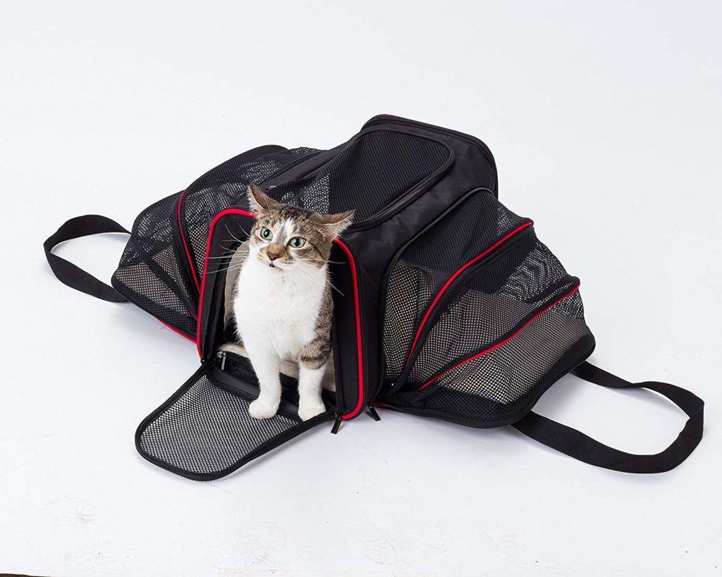 Kitten wristlet padded with swivel strap
