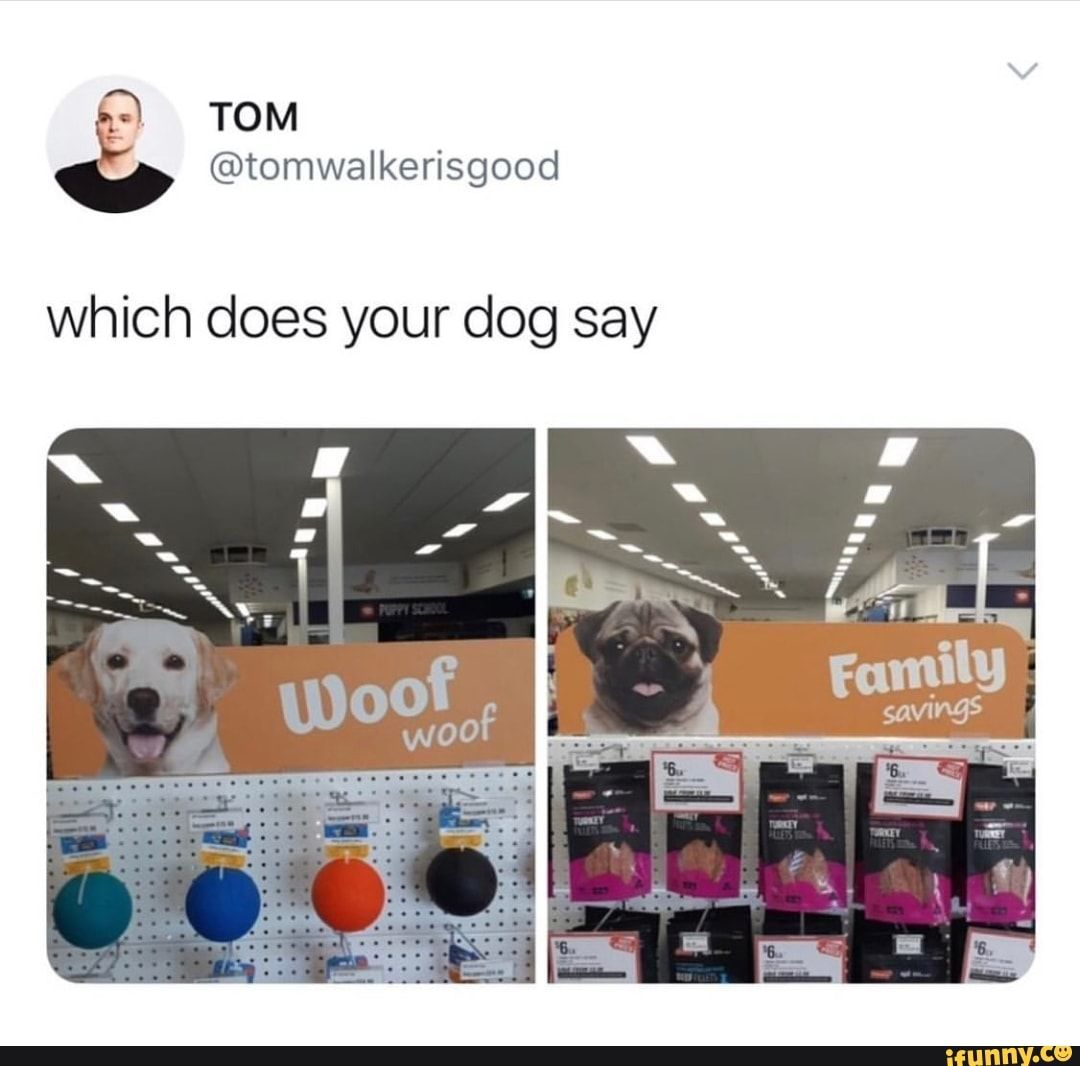Which Does Your Dog Say Ifunny Funny Tweets Funny Funny Memes