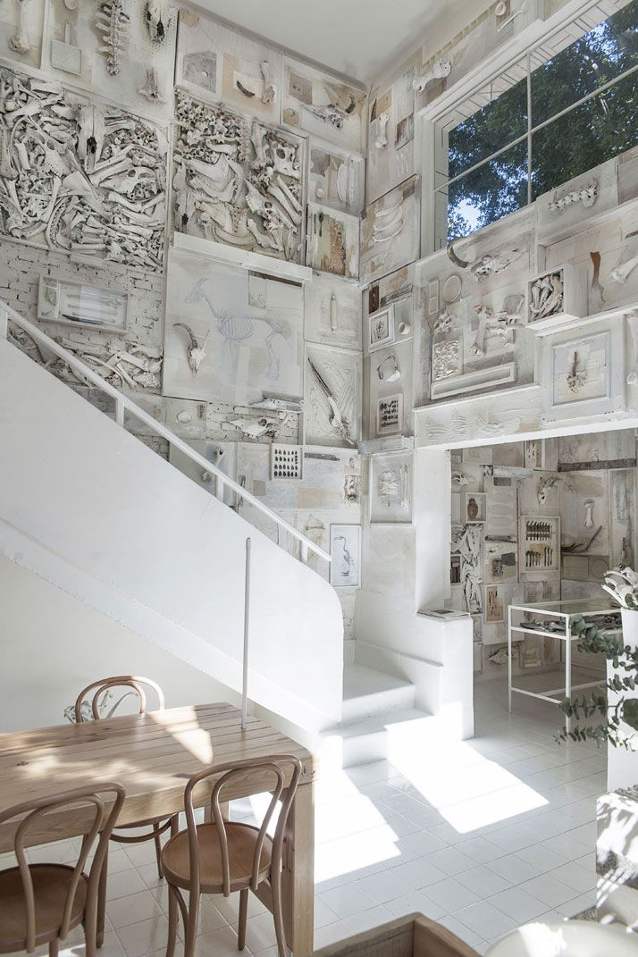Hueso Restaurant, a Curiosity Cabinet of 10,000 Bones in Mexico | http://www.yatzer.com/hueso-restaurant-mexico-cadena Photo by Jaime Navarro. Courtesy of Cadena+Asociados.