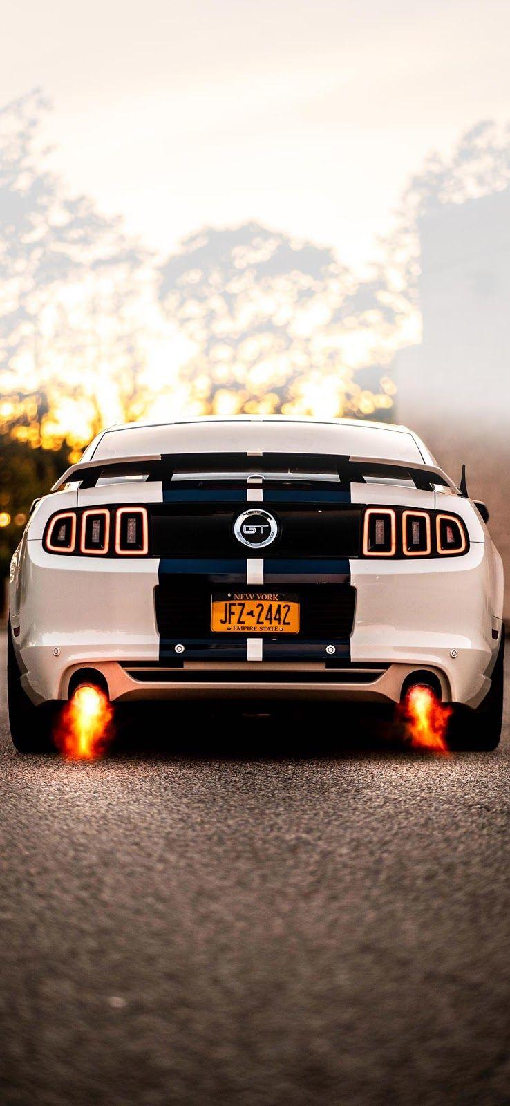 Mustang Gt Wallpaper Mustang Gt 2014 Ford Mustang Mustang
