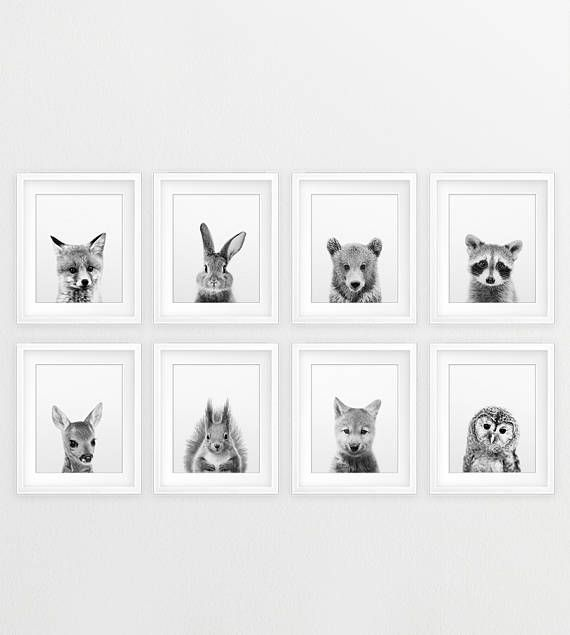 Woodland Nursery Decor Baby Animals