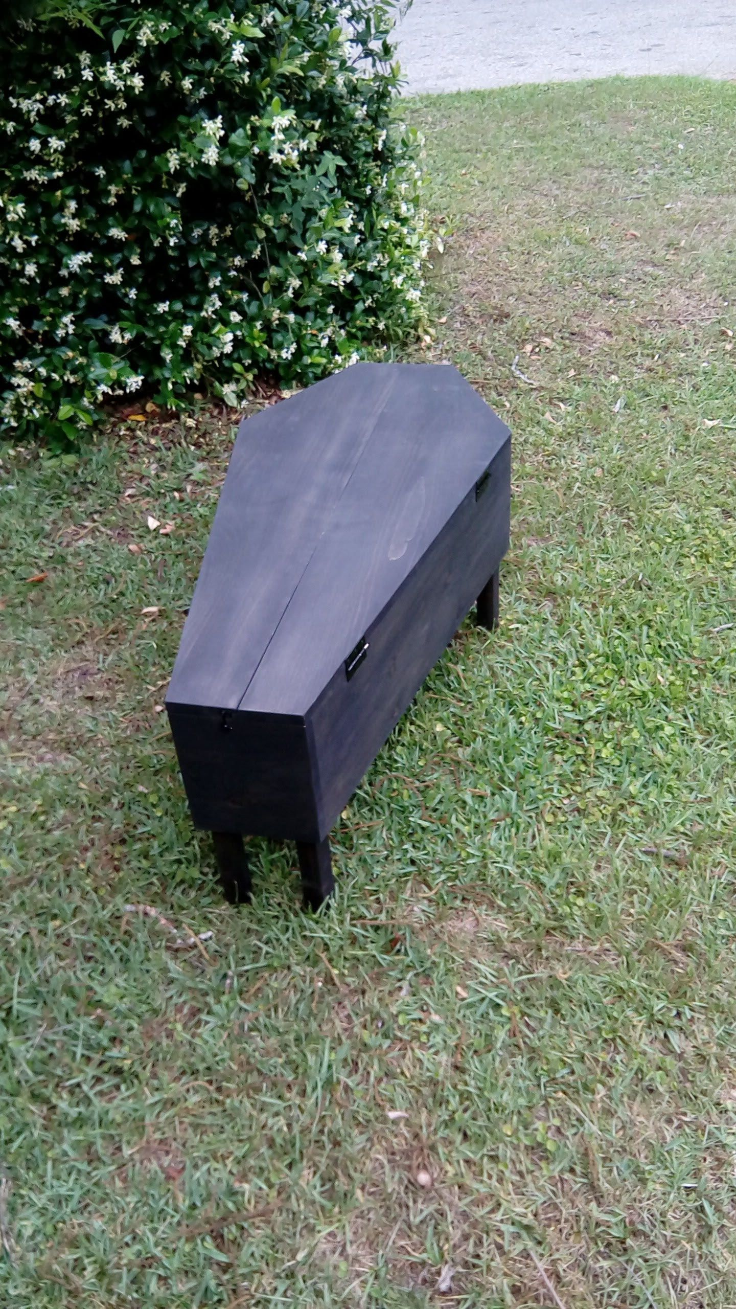 Coffin Coffee Table Coffee Table Coffin Storage Ritual Table