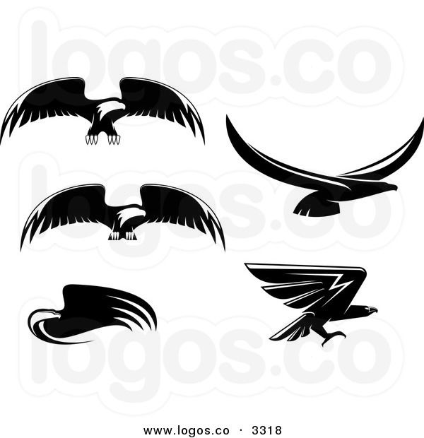 Royalty Free Vector of Black and White Flying Eagle Logos