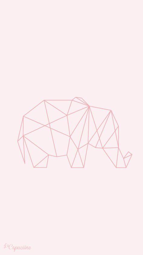 Fond D Ecran Elephant Fond D Ecran Telephone Fond Ecran Rose Fond D Ecran Pastel