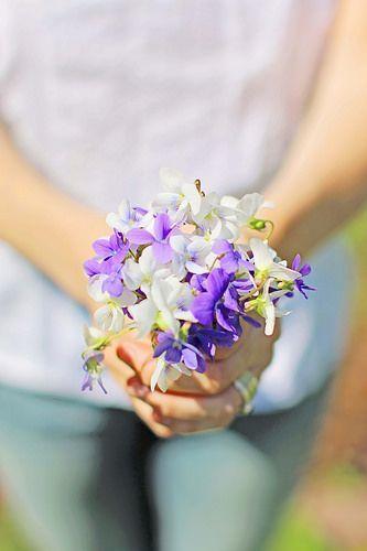 """""""小さな幸せ""""が花言葉♡スミレがテーマのスイーツで可憐で可愛いおもてなし♡にて紹介している画像"""