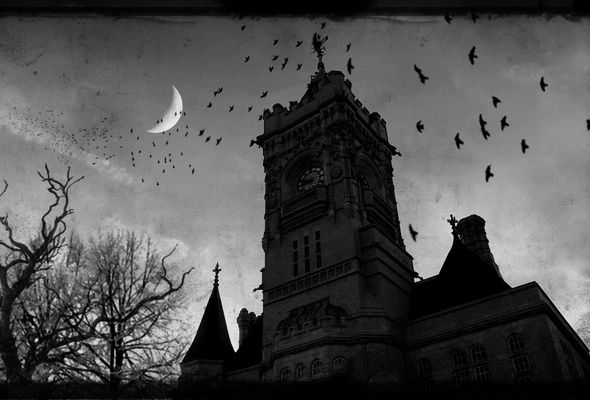 Gothic Raven Images Wallpaper Gothic Castle Dark Moon Raven Desktop Wallpaper Other