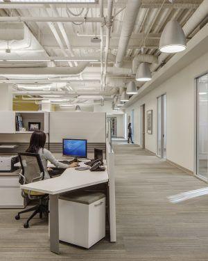 OCL Lighting Office Hallway