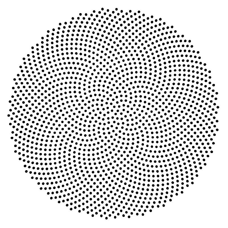 Goldenratio Png 800 800 Fibonacci Golden Ratio Fibonacci Golden Ratio