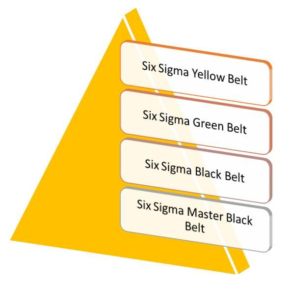 Pin by Amity Training and Consultancy on Six Sigma Yellow Belt