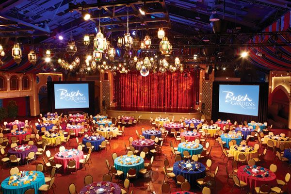 Tampa wedding venues you havent considered yet busch gardens wedding venues you havent considered yet 4 of 5 tampa florida wedding planners junglespirit Image collections