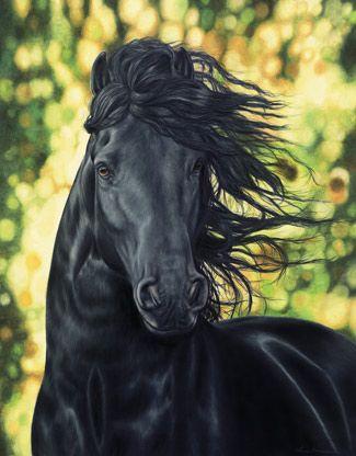 "Wind Walker"" Friesian Horse print by Cheri Sorensen #"
