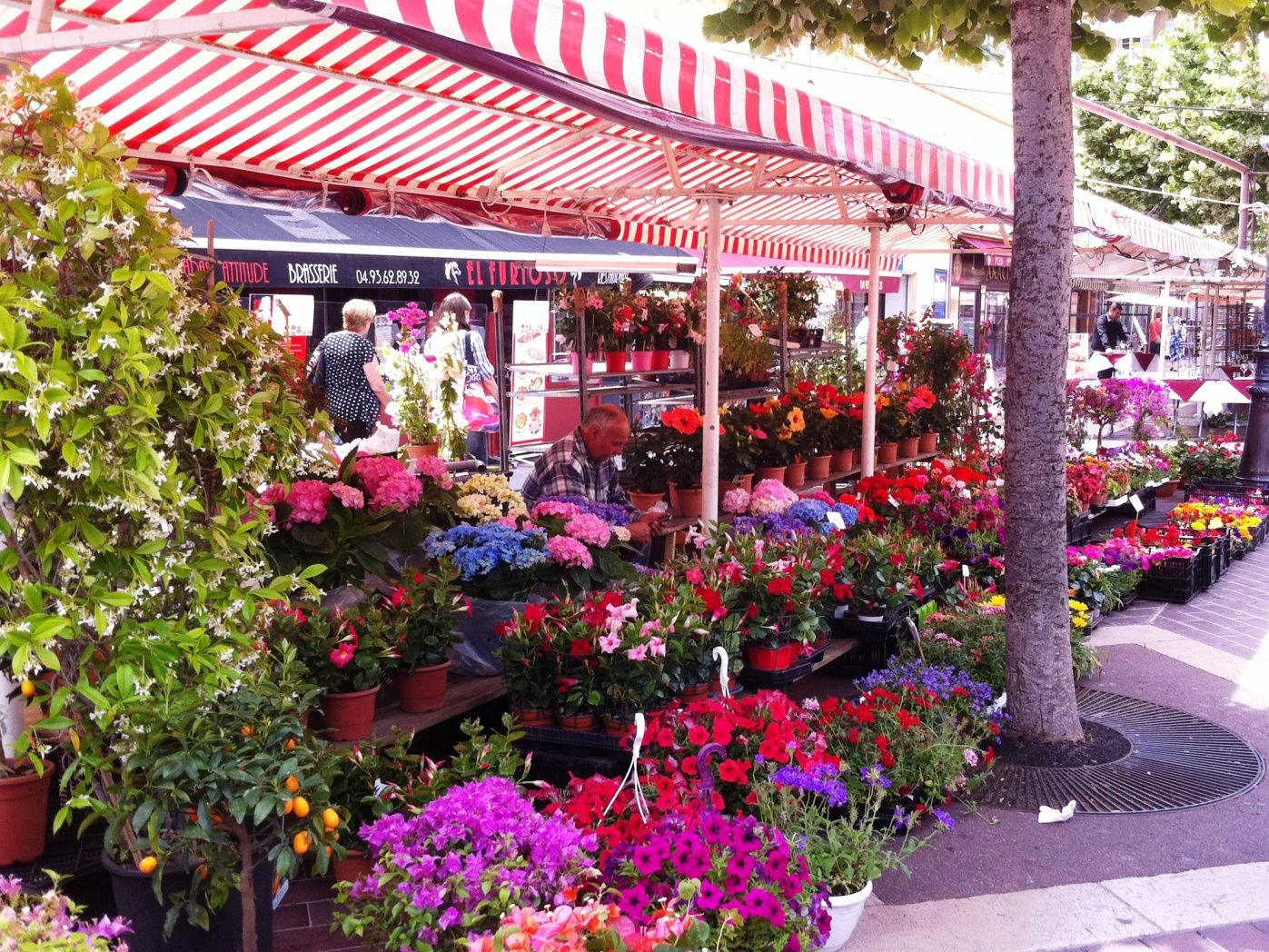 Marketing in Old Town Nice: Cours Saleya and More | Nice ...