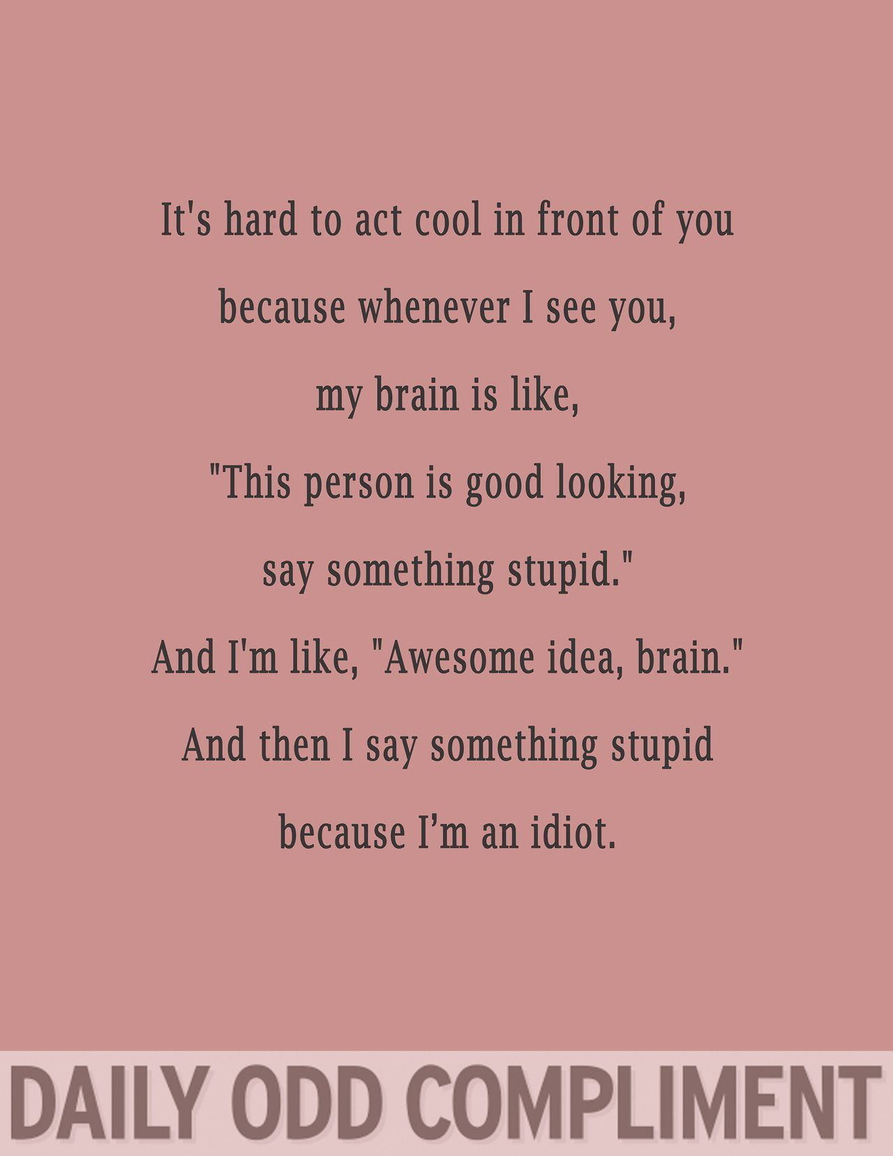 Haven T Seen This Here In A While Imgur Funny Compliments Daily Odd Compliment Daily Odd
