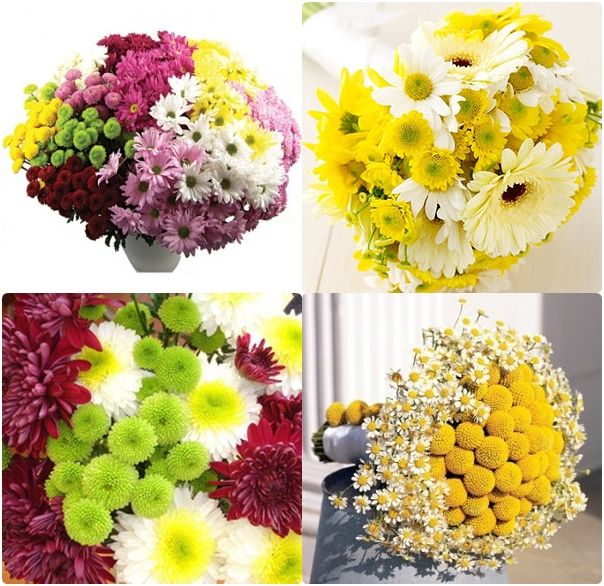 What Are Cheap Flowers For Weddings: Mums Make Cheap And Beautiful Fall Wedding Flowers