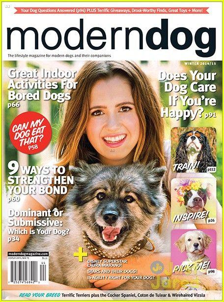 Meet Laura Marano S Adorable Dog Velvet Bored Dog Dog Magazine Modern Dog Magazine