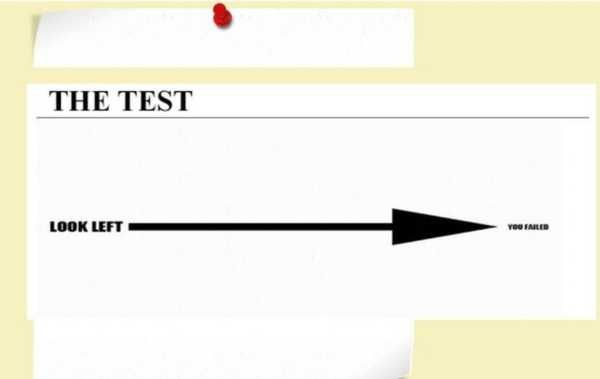 The-TEST