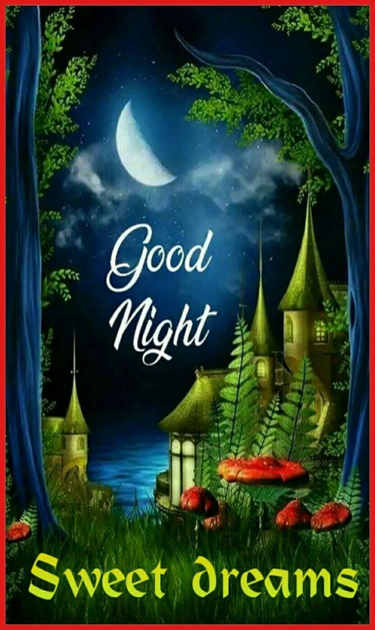 Have A Good Evening Everyone Sweet Dreams Good Night Beautiful Good Night Image Good Night Sweet Dreams
