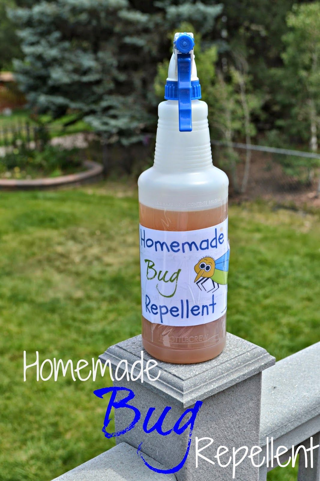 How to Make Homemade Bug Repellent DIY Bug repellent