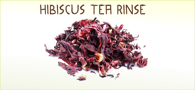Hibiscus Tea Can Be One Of The Best Health Drinks For Women Hibiscus Tea Benefits Hibiscus Flowers Hibiscus