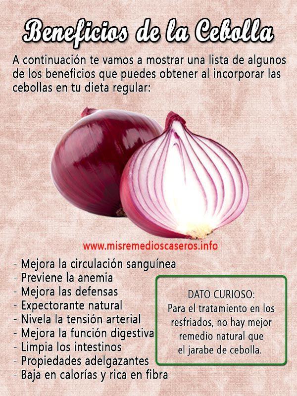 Propiedades de la cebolla morada para adelgazar