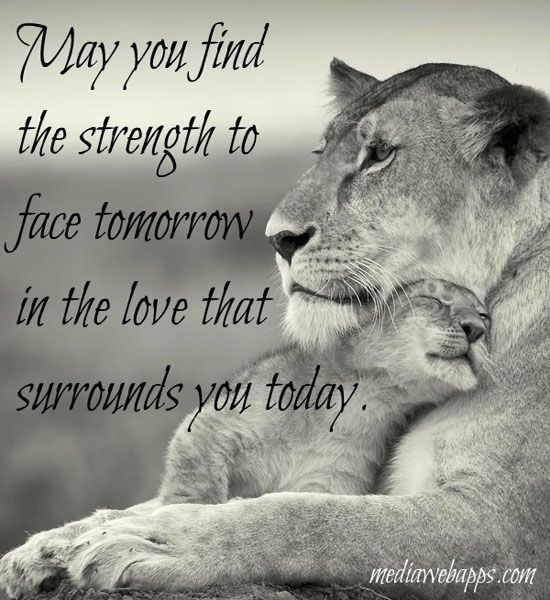 Developing Strength Motivational Quote: May You Find The Strength Quotes Quote Inspirational