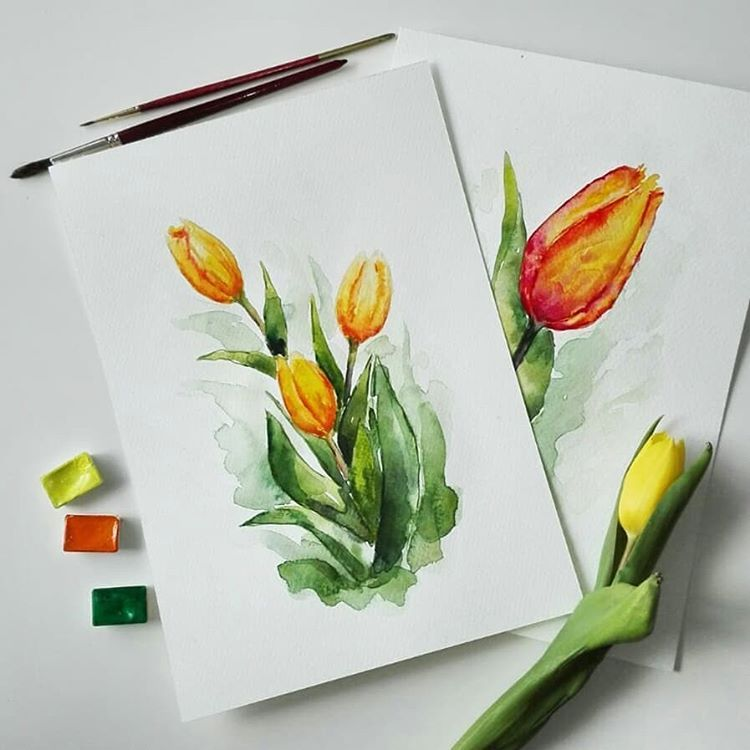 Gorgeous Yellow Tulips By Artist Yello Illustration Tag