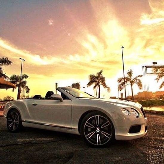 2013 Bentley Continental Gt Speed Convertible: Criei Um Blog Para Mostrar,aos Amigos Muitas Coisas Para