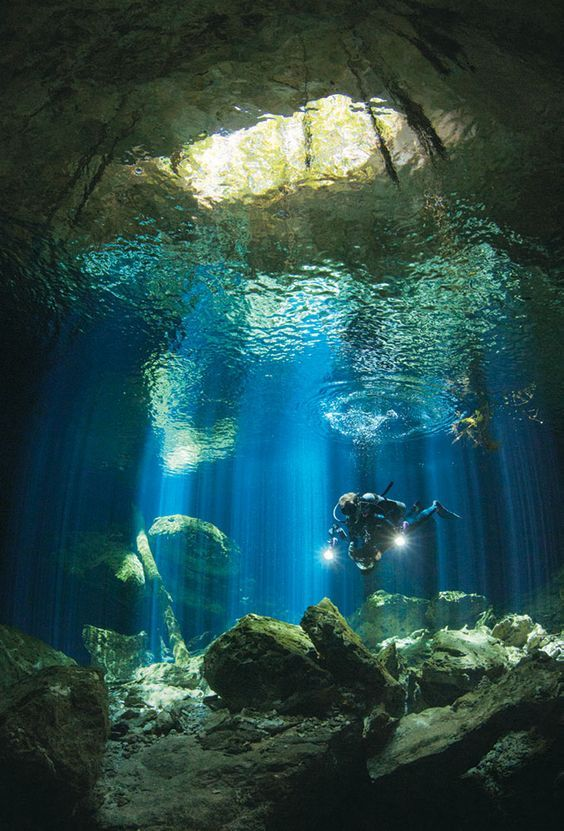Diving in Cozumel - Mexico.