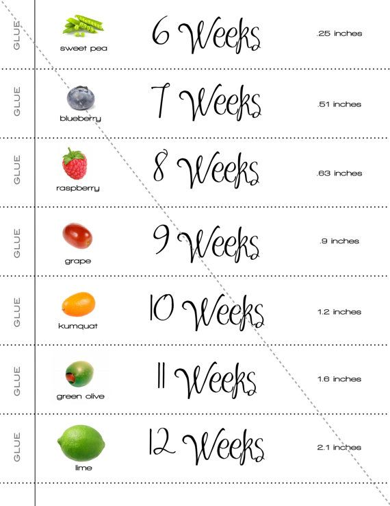 A Cute And Simple Way To Count Down The Weeks Until Your Babys Due