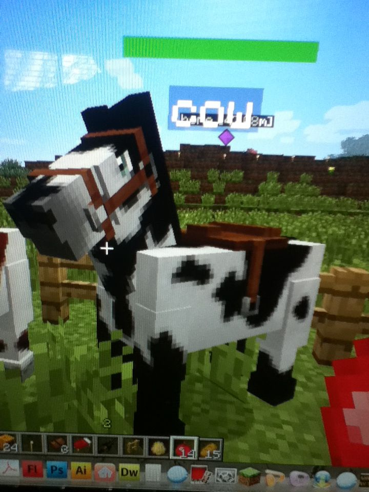 Breed the second horse with a black horse | Minecraft Horses