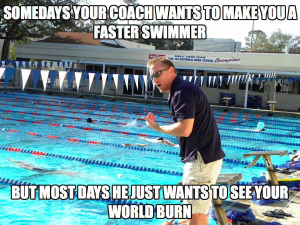 c125701ccf01b077bf527f1dba417d48 you might be a swimmer if funny swimming memes plus friday