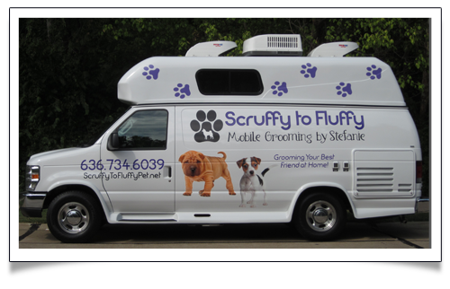 The Scruffy To Fluffy Mobile Dog Grooming Van Dog Grooming