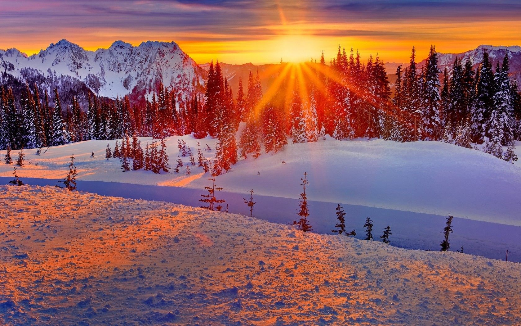 winter mount rainier mountain snow sunset winter nature. Black Bedroom Furniture Sets. Home Design Ideas