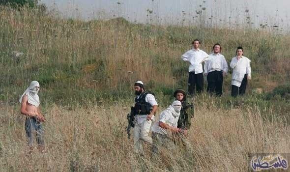 """منظومة مواصلات عامة جديدة لمستوطنات الخليل: اعلن وزير المواصلات الاسرائيلي """"يسرائيل كاتس"""" اليوم تدشين منظومة مواصلات عامة جديدة وحديثة…"""