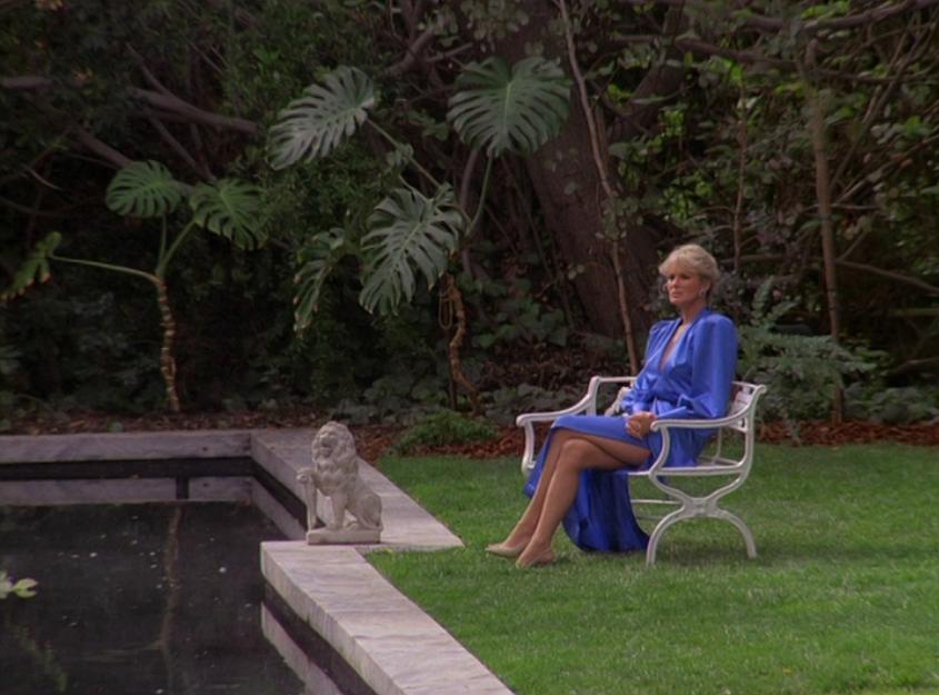 Silk Blue Dress Lily Pond Catfight Season 3 Dynasty 1980 S