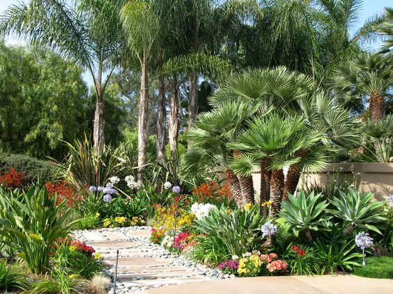 Lush Desert Tropical Landscaping With Lots Of Color And Variation Tropical Landscape Design Landscape Design Landscape Design Services