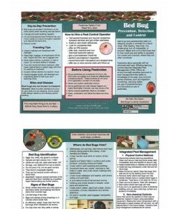 Bed Bug Prevention Detection Control Brochure Bed Bugs Prevention Bed Bugs Prevention