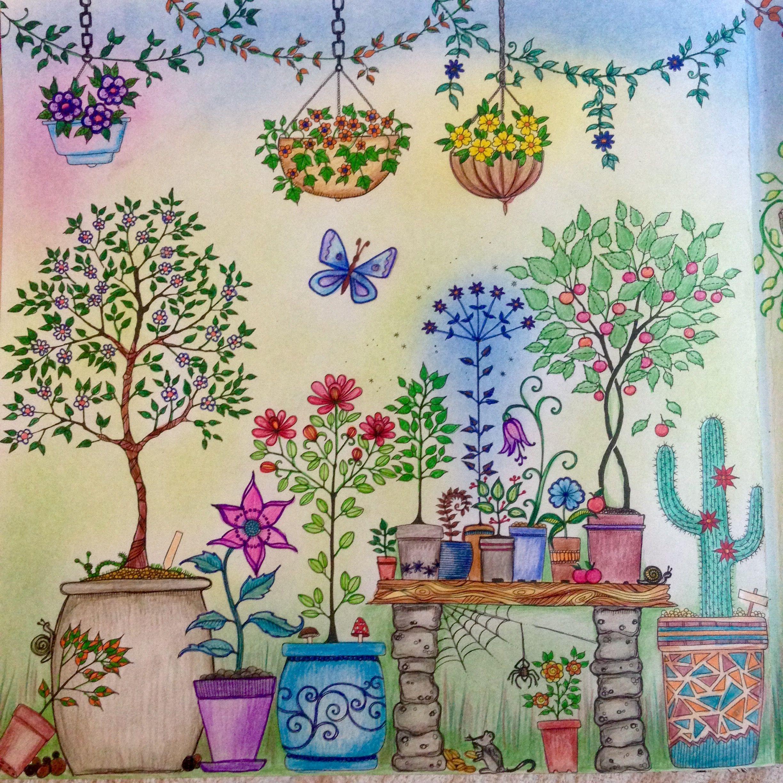 Johanna Basford Colouring Gallery Jardim Secreto Jardim Secreto Livro Jardim Secreto Colorir