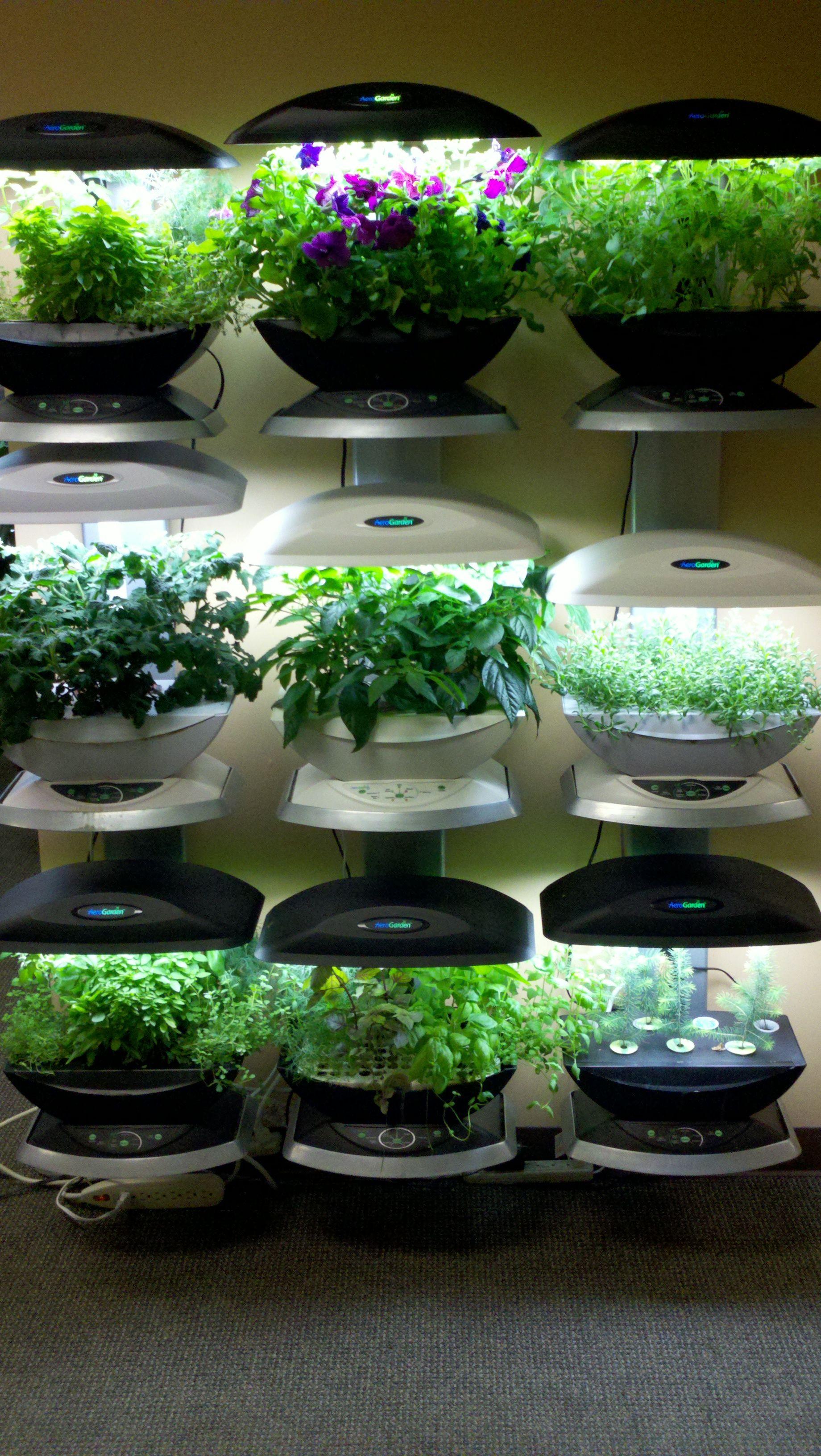 The Incredible Wall Farm Indoor Garden Vertical Garden 400 x 300