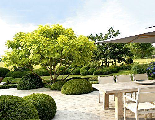Design Mit Pflanzen Moderne Architektur Im Garten Garten Und Ideenbucher Bjvv Tuin En Terras Tuin Architectuur Tuin