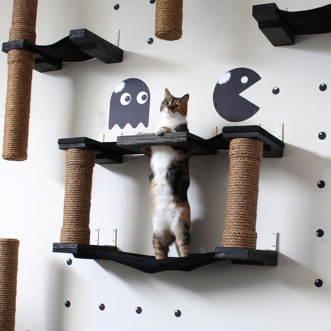 12 parcours g niaux pour votre chat acrobate nos amis. Black Bedroom Furniture Sets. Home Design Ideas