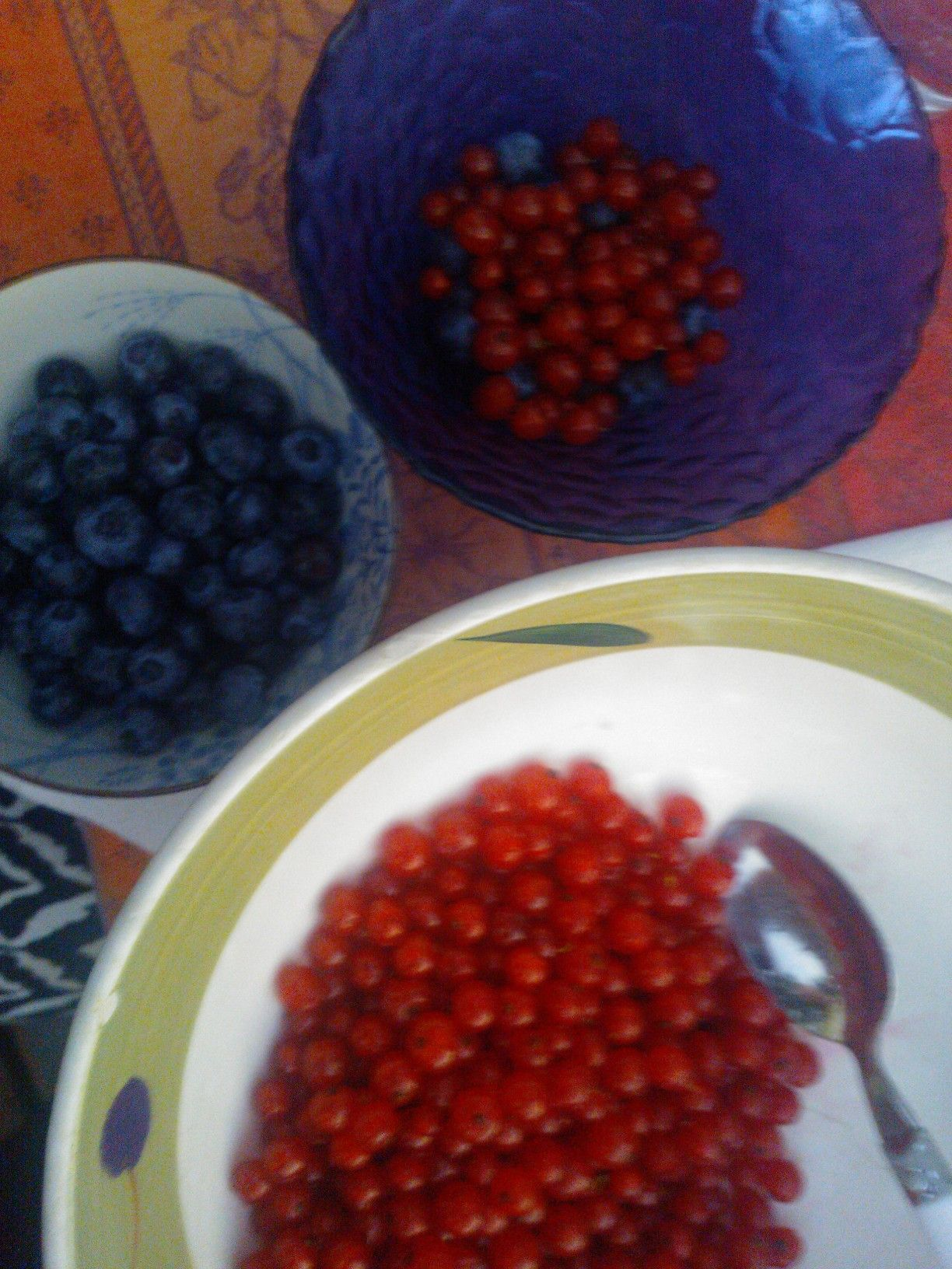 blauwe en rode bessen uit  tuin in Italië