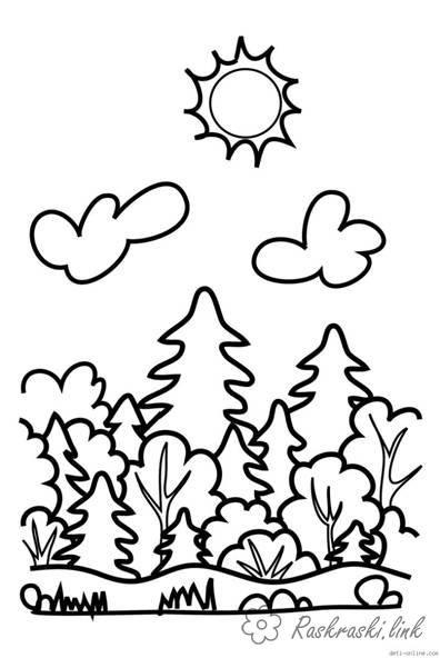 Раскраски Лес и пейзажи раскраска лес,облака,ель,кустарник ...