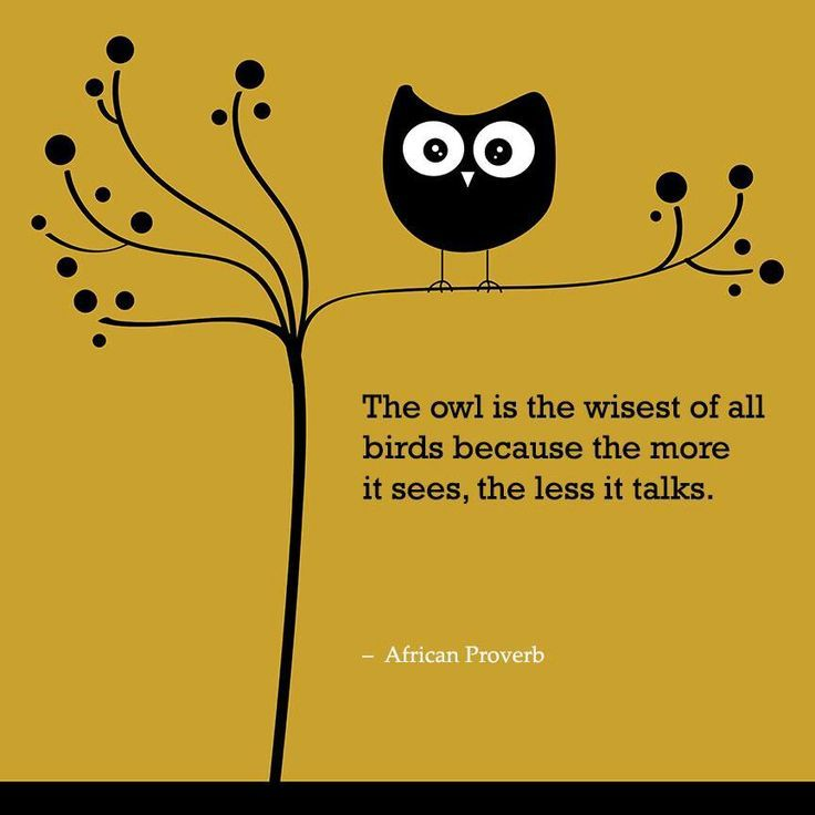 The owl is the wisest of all birds because the more it sees, the ...