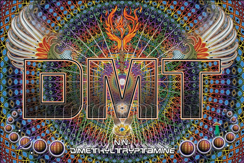 Our Essential Guide to DMT tells you everything you need to know about this powerful psychoactive substance, from effects to safety to correct methodology.