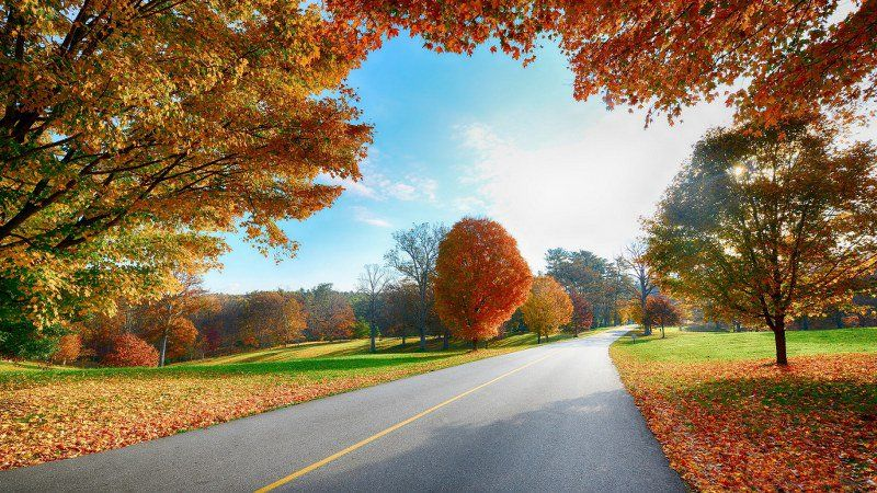 Je On Twitter Autumn Landscape Landscape Wallpaper Scenery Wallpaper